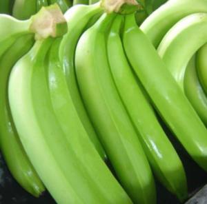 Agroindustria del Plátano