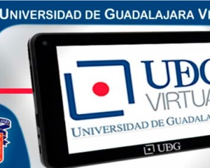UDG Virtual